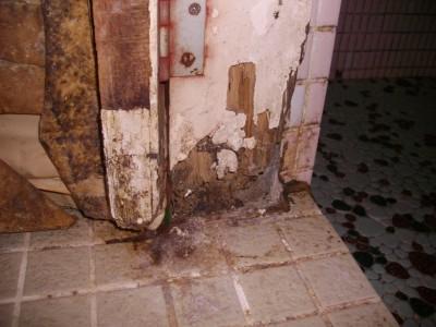 風呂場の入り口被害