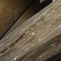 山口市江崎にて何年もシロアリ被害に遭われた住まいのサムネイル