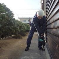 防府市佐波にて外回りの処理。杭に被害。のサムネイル