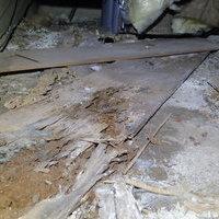 周南市皿山にて白蟻駆除工事。水漏れから発覚した被害。のサムネイル