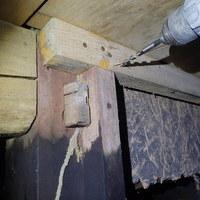 防府市新田にてヤマトシロアリ駆除工事。のサムネイル