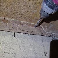山口市江崎にてカンモンシロアリの駆除工事。のサムネイル
