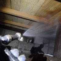 宇部市東岐波にて白蟻予防工事。羽蟻が来た事がきっかけで。のサムネイル