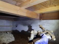 下松市河内青葉台にて白蟻予防工事。
