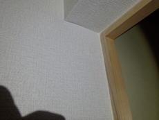 山陽小野田市にてカンモンシロアリの被害。数日お時間をいただき防除工事。
