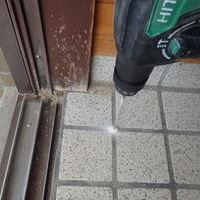 柳井市柳井にてヤマトシロアリ駆除工事。羽蟻が出た!のサムネイル