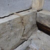 防府市開出にてヤマトシロアリの駆除工事。羽蟻発生からわかった被害。のサムネイル