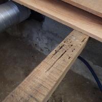 防府市田島にて定期的に白蟻予防工事。被害から10年のお取引き。のサムネイル