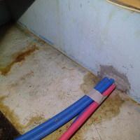 長門市東深川にて、浴室ヤマトシロアリ被害。工務店さんと連携して駆除。のサムネイル