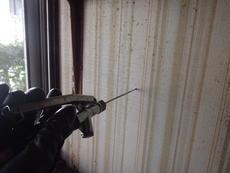 防府市佐野にてイエシロアリ駆除。浴室周りから発生した白蟻の駆除です。