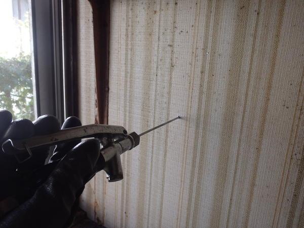 防府市佐野にてイエシロアリ駆除。浴室周りから発生した白蟻の駆除です。のサムネイル