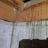 防府市高井にてヤマトシロアリ駆除工事。知らず知らずのうちに広範囲に被害が。のサムネイル