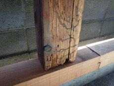 防府市泉町にて倉庫の白蟻被害の改修工事。修繕に合わせて適切に白蟻予防を。