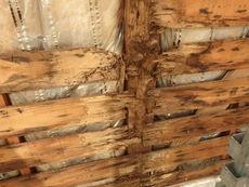 防府市今宿にてヤマトシロアリ駆除工事。白蟻被害の始まりは外壁内の浸水でした。