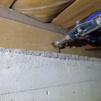 防府市今宿にてヤマトシロアリ駆除工事。白蟻被害の始まりは外壁内の浸水でした。のサムネイル