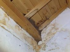 防府市富海にて蔵のイエシロアリ駆除工事。目立たないところから蔵のてっぺんにまで。