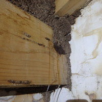 防府市富海にて蔵のイエシロアリ駆除工事。目立たないところから蔵のてっぺんにまで。のサムネイル